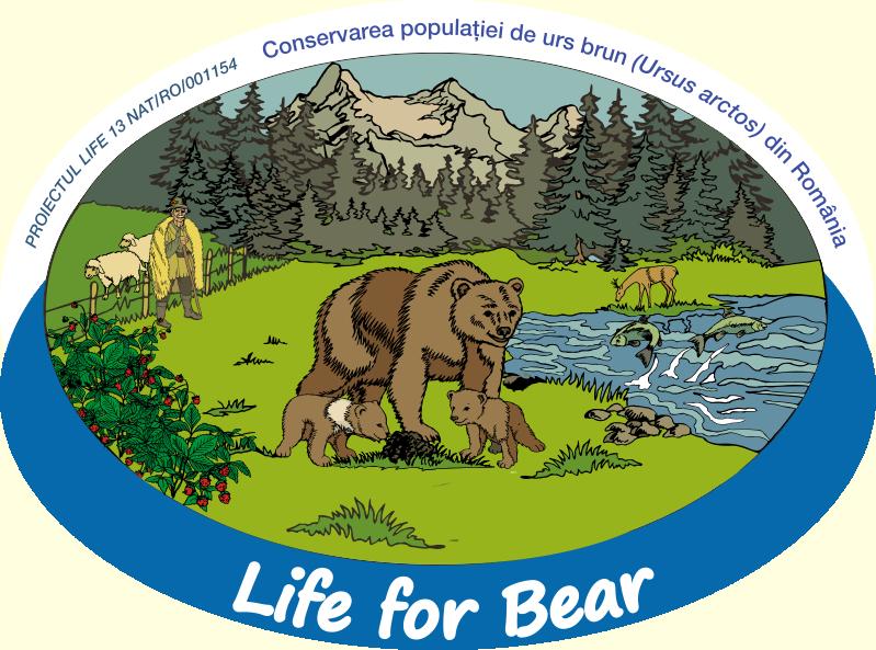 Life for Bear