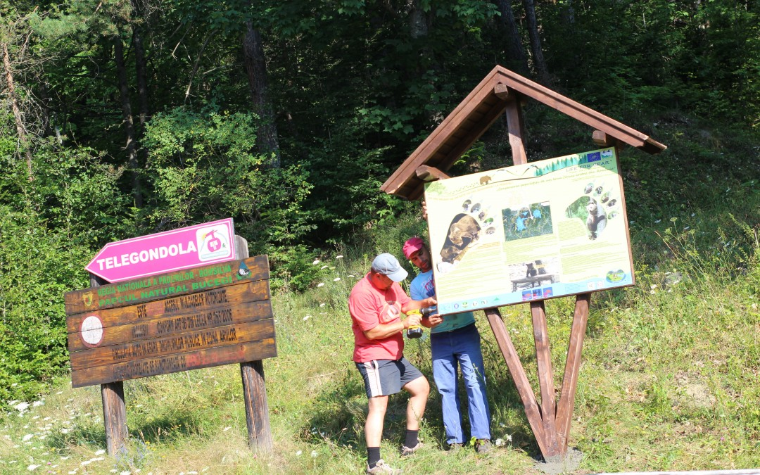 The installation of Life for Bear information boards – E3