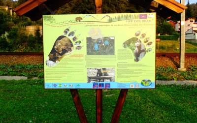Installing LIFE FOR BEAR  Informatory Panels