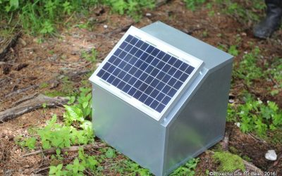 The installation of electric fences – C6