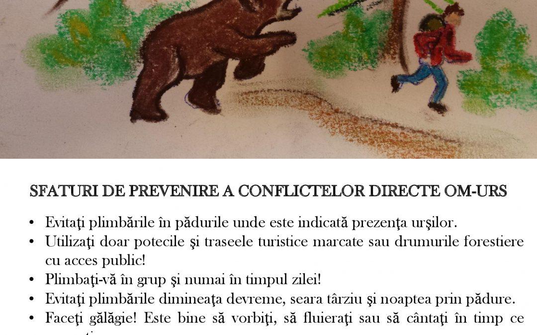 Deznodământ şi cursul evenimentelor în cazul ursului cu comportament deviant din zona Braşovului